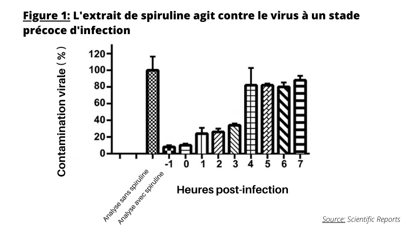 Spiruline contre infections virales
